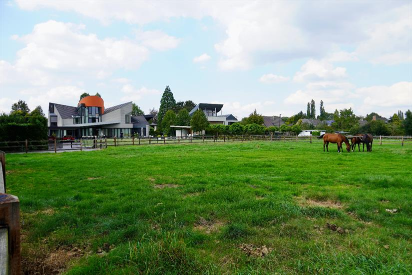 Modern villa with stables and meadow on approximately 2ha in Hoogstraten (Antwerp)