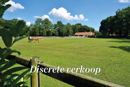 For sale farm - Beersel