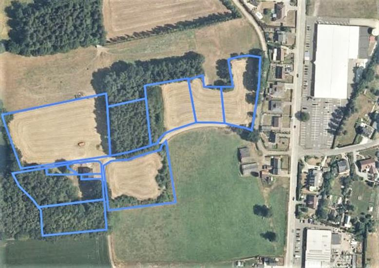 Luxurious two-family house in construction phase with meadows on domain of approximately 3,5ha in Diest (Flemish Brabant).
