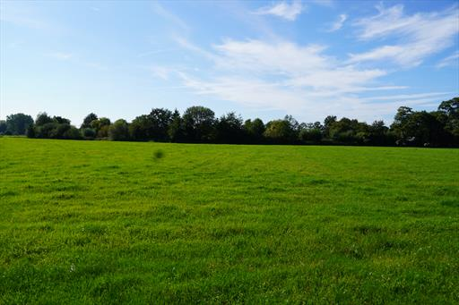 For sale land - Westerlo