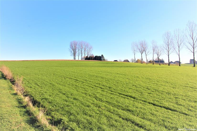 Excl villa for sale in Bever