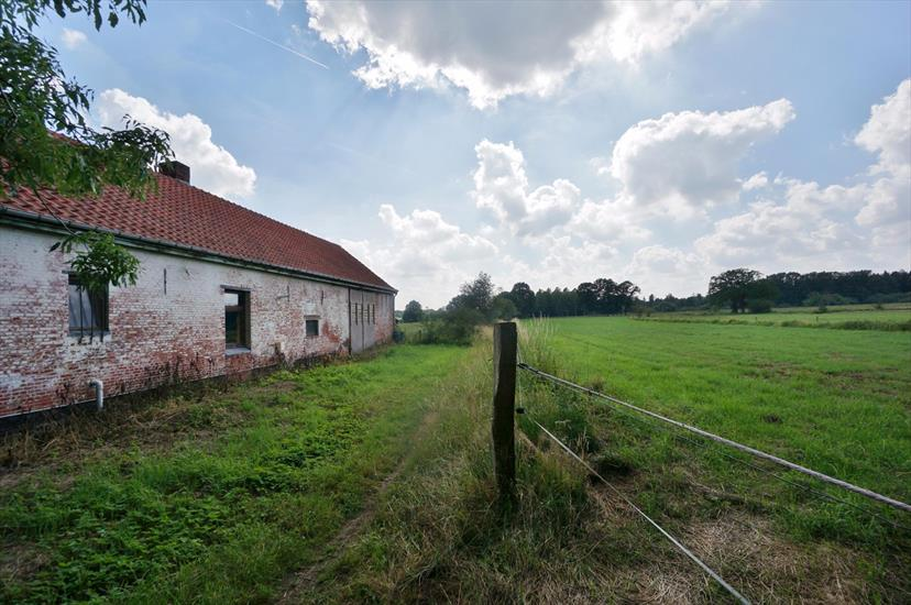 Farm sold in Diest