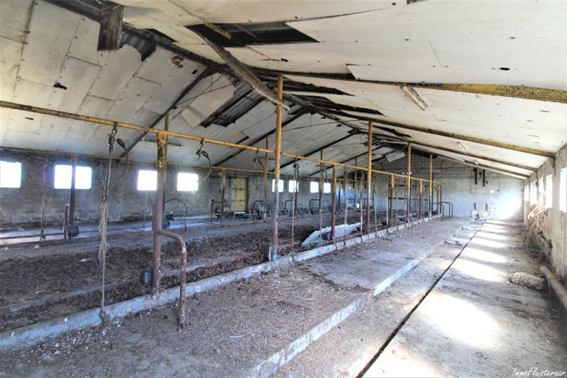 Farm for sale |  with option - with restrictions in Scherpenheuvel-Zichem