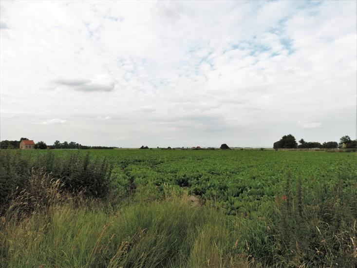 Land sold in Tienen