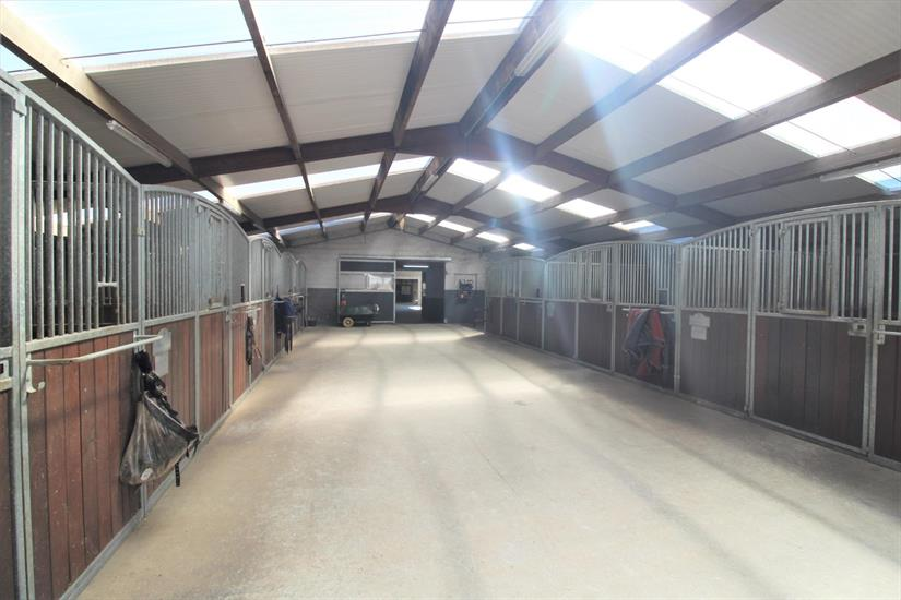 House with professional horse accommodation on approximately 15ha in Chimay (Hainaut)