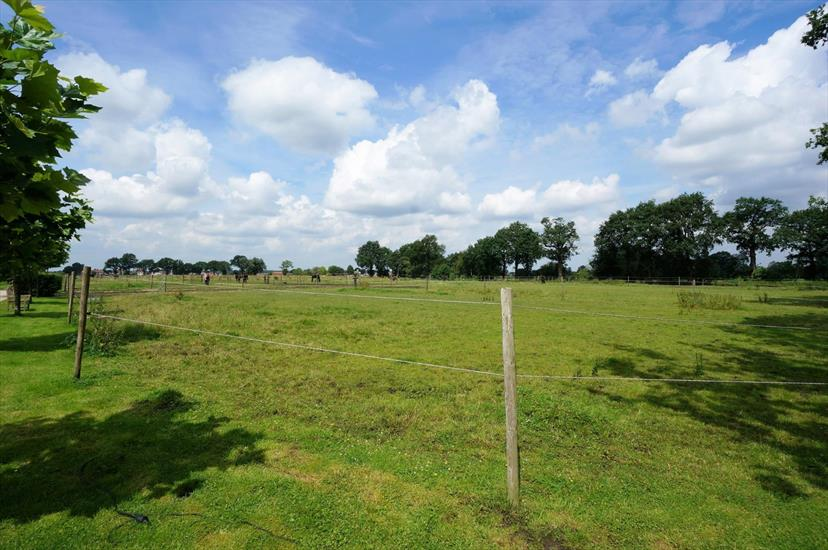 Farm sold in Merksplas