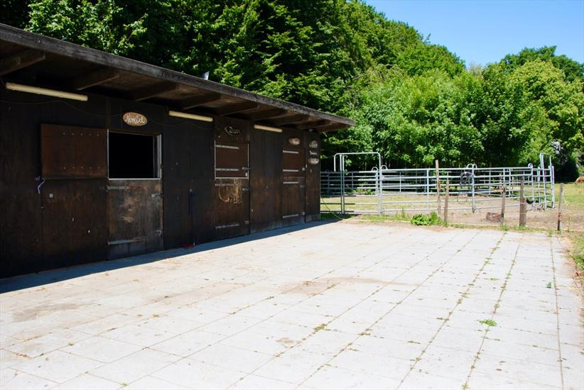 Beautiful renovated farm with stables and outdoor arena on approximately 2,41ha in Brecht